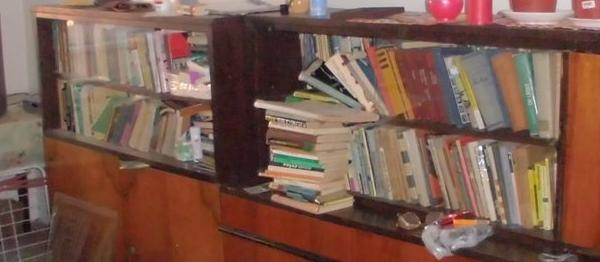 vyklizenizdarma-knihy